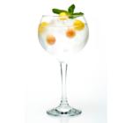 Gin Buss No.509 Persian Peach (0,7 l, 40%)